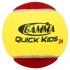 Теннисные мячи для мини-тенниса (красные)
